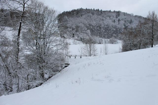 Jahresrückblick 2016: Verschneites Dürrenhof