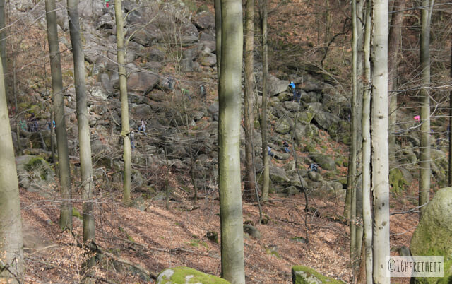 Odenwald_Das Felsenmeer