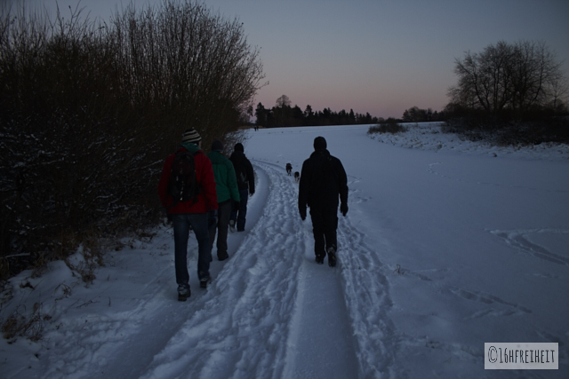 Pottenstein Ewige Anbetung 2017_Karawanne: Mehrere Menschen laufen in gleicher Richtung durch die verschneite Landschaft