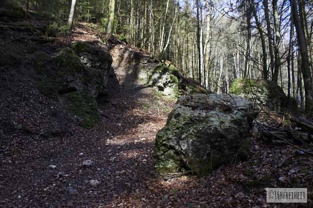 Felsbrock auf dem Weg nach Tüchersfeld