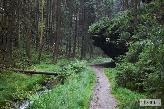 Sächsische Schweiz_fuer_Eilige_Felsen